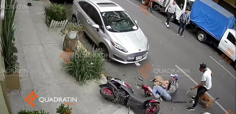 Ataque-de-Pitbull-Tabacalera-770x392